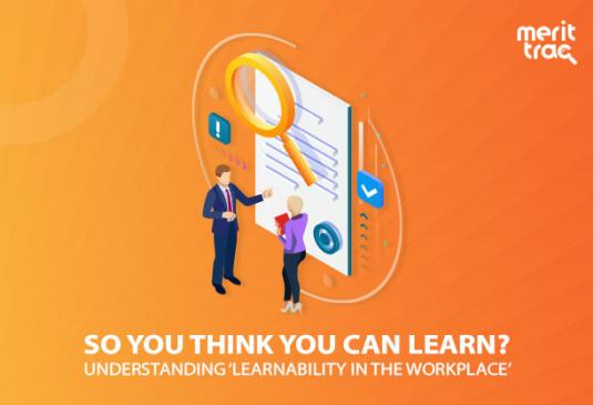"So You Think You Can Learn?"": Understanding 'Learnability in the workplace"