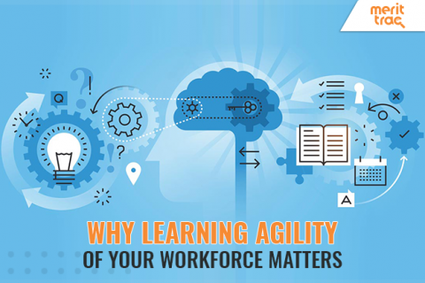 Why does the Learning Agility of Your Workforce Matte